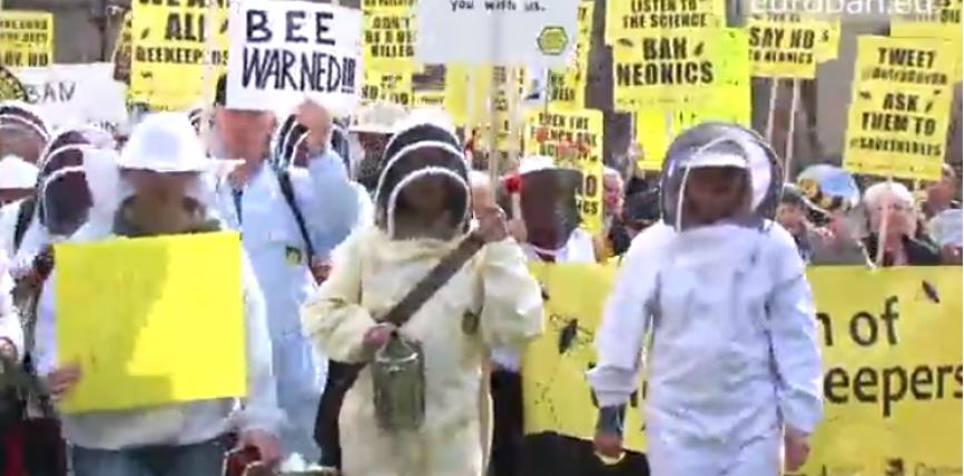 Protejarea albinelor și combaterea importurilor de miere contrafăcută în Europa