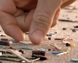 Microplasticele: surse, efecte și soluții