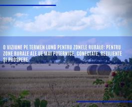 O viziune pe termen lung pentru zonele rurale: pentru zone rurale ale UE mai puternice, conectate, reziliente și prospere