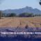 Agricultură: Comisia publică o listă cu posibile programe ecologice