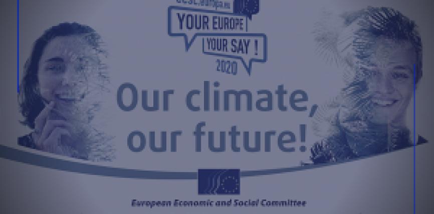 """Elevi de la Colegiul Național """"Ienăchiță Văcărescu"""" din Târgoviște vor participa la un Summit european al tineretului dedicat climei, la Bruxelles"""