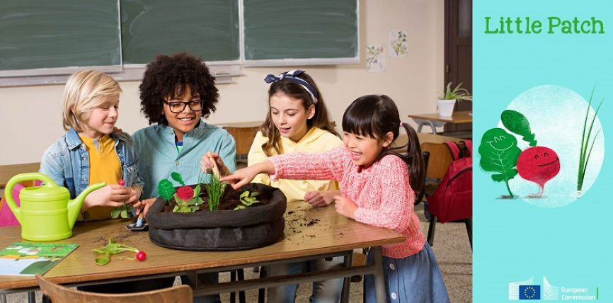 """Profesorii din UE pot primi o """"grădină în miniatură"""", ca material didactic"""