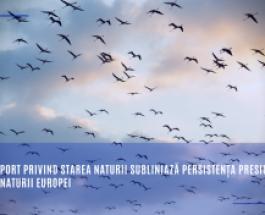 Noul raport privind starea naturii subliniază persistența presiunilor asupra naturii Europei