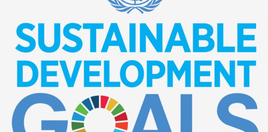 Durabilitate: Comisia prezintă un document de reflecție privind o Europă mai durabilă până în 2030