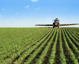 Creștere exponențială a importurilor de soia din SUA