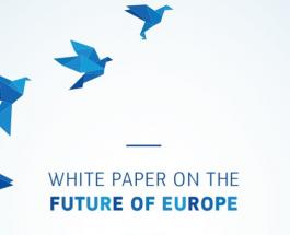 Carte albă privind viitorul Europei: Căi spre unitatea UE cu 27 de state membre
